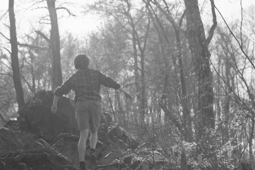 boy lost forest