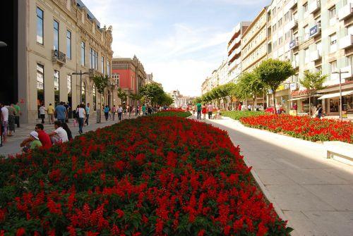 braga gardens portugal