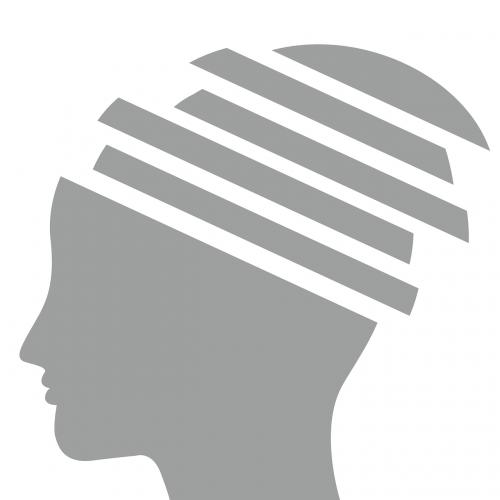 brain mind gray matter