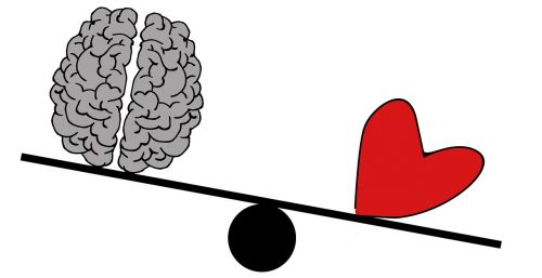 brain head psychology