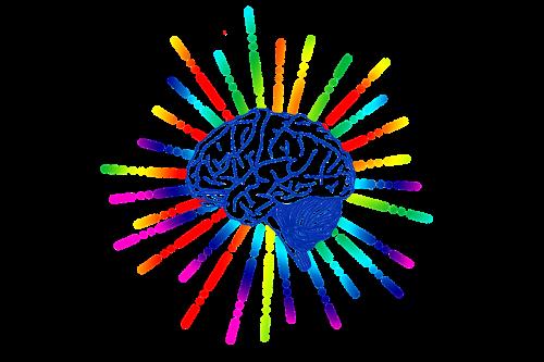 brain icon star