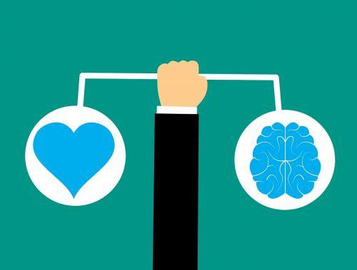 brain heart brain icon