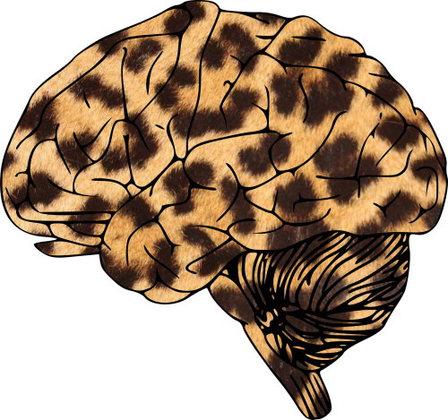 brain leopard animal-print