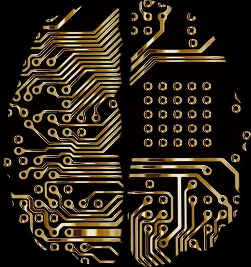 brain  circuit board  pcb