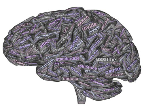brain  dualistic  thought