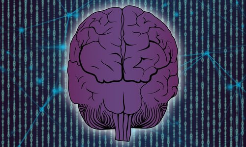 brain  technology  network