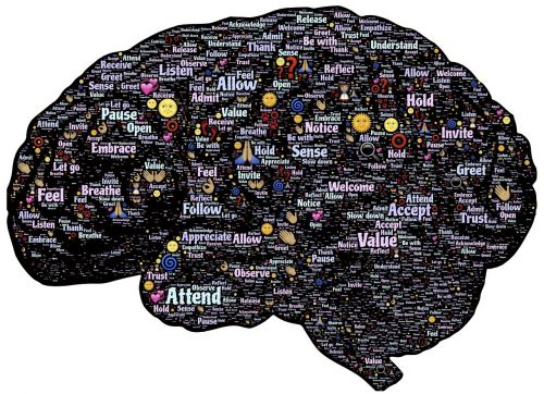 brain mind mindset