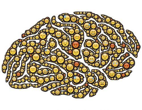 brain mind emotions