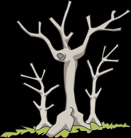 branch dead nature