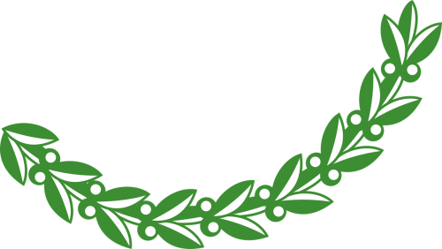 branch,leaf,leafy,leaves,olive,plant,free vector graphics