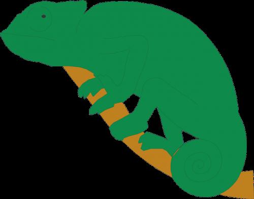 branch green chameleon