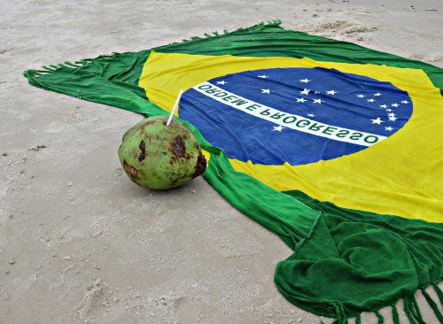 brazil beach coconut water
