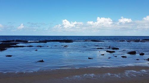 brazil  salvador  beach