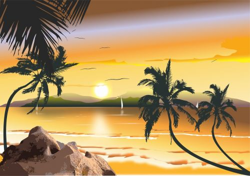 brazilian beach beach northeast brazil