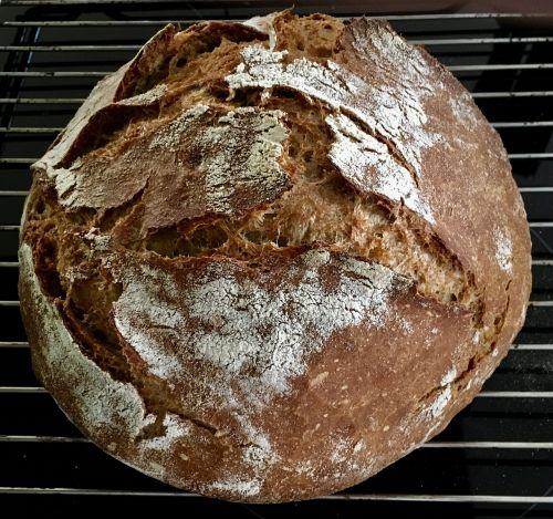 bread bake crispy