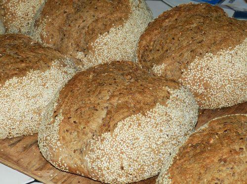 bread food bake