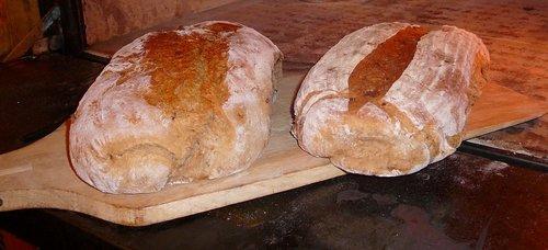 bread  bake  food