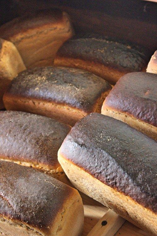 bread  food  yeast