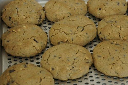 bread cookies wellness cookies