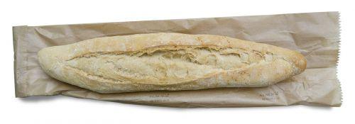 bread panini food