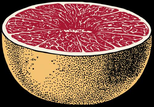 pusryčiai,citrusiniai,spalva,spalva,vaisiai,greipfrutas,sveikas,rožinis,raudona,vitaminai,nemokama vektorinė grafika