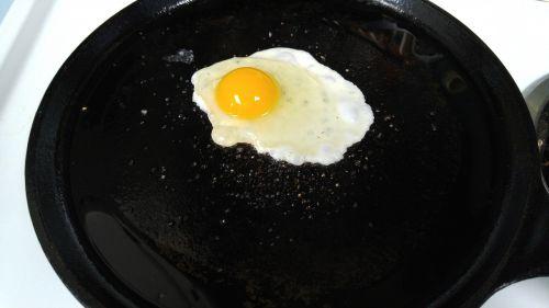 breakfast fried egg