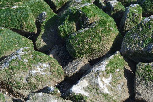 breakwater texture pierre