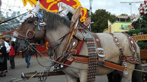 brewery horse kaltblut horse