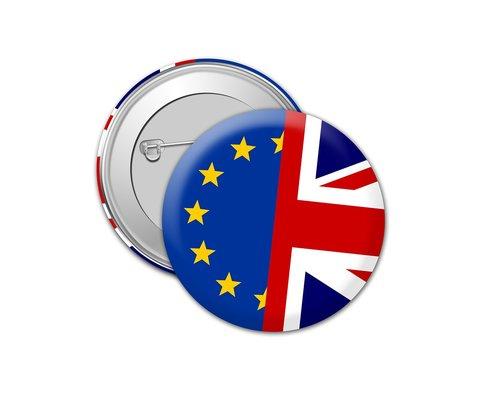 brexit  europe  referendum