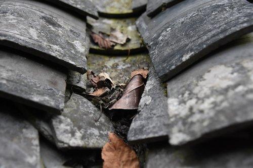 brick sheet  tiles  defoliation