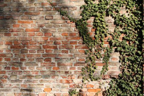 brick wall bricks wall