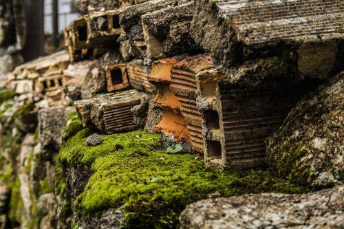 bricks pile of bricks moss