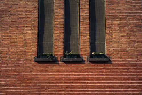 bricks wall brickwork