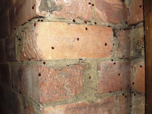 bricks wall corner