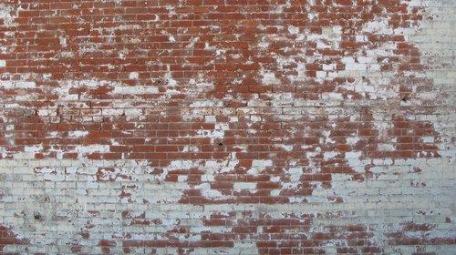 bricks  red bricks  brick wall