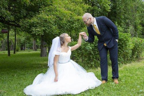 bride  the groom  love