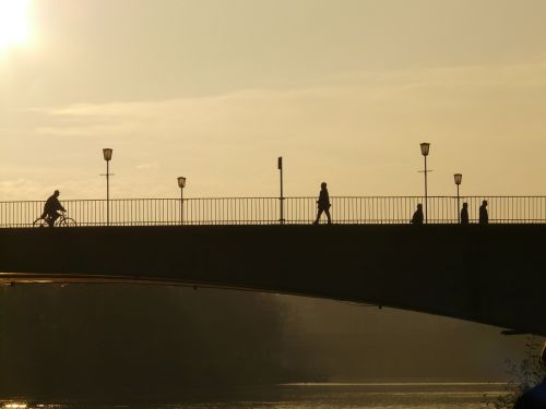 bridge human profile