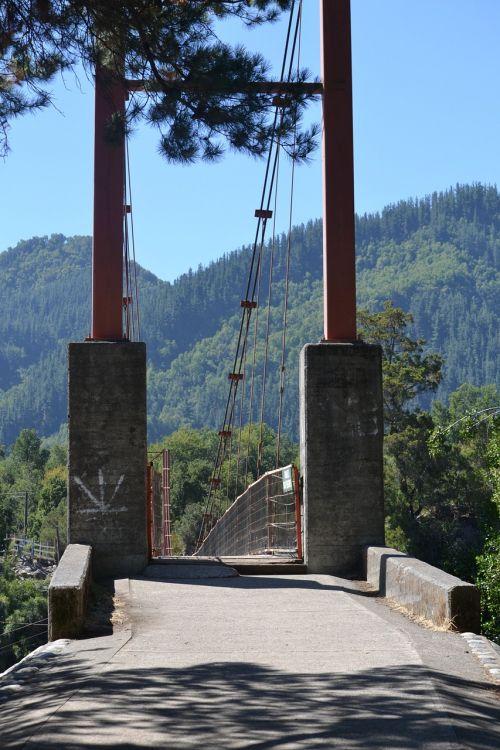 bridge input columns