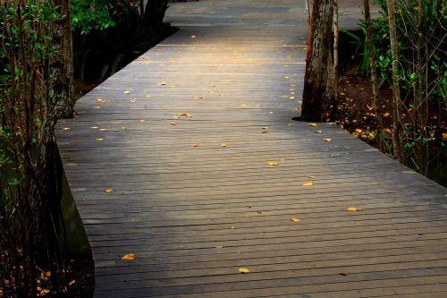 tiltas,kelias,praėjimas,mediena