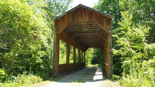 bridge wood forest