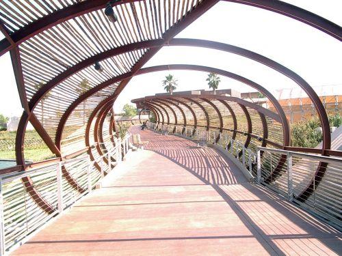 bridge bamboo corona