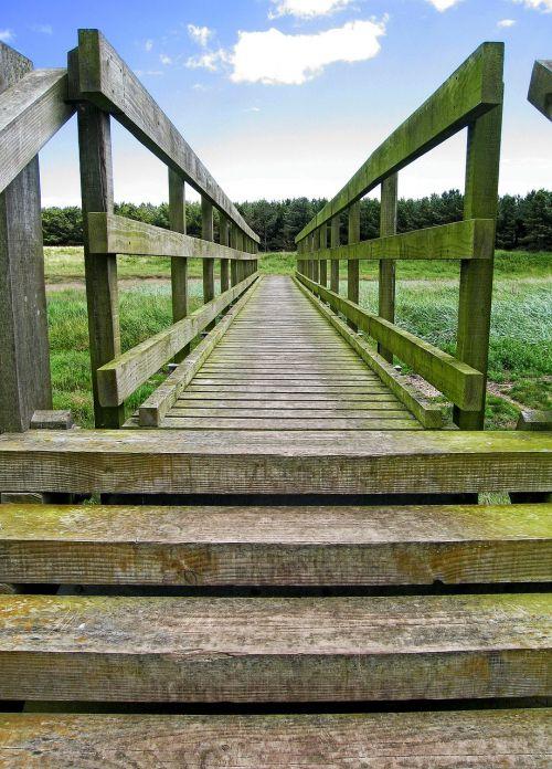 bridge wooden wood