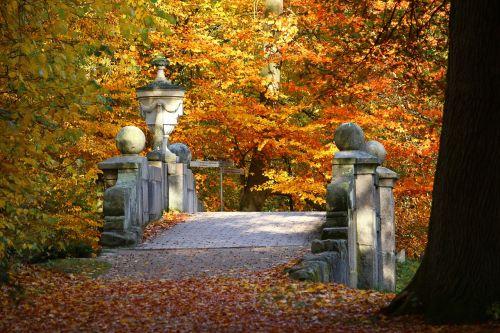 bridge autumn fall foliage