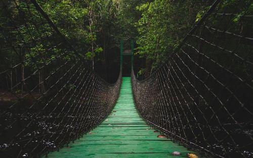 bridge path walkway