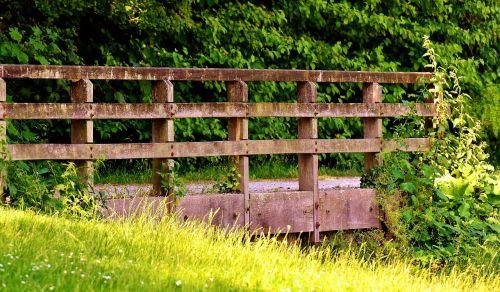 bridge bach park