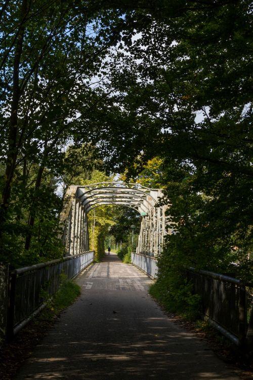 bridge forest footpath
