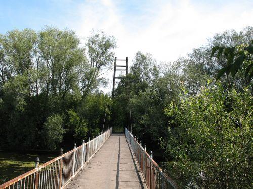 bridge sidewalk trees