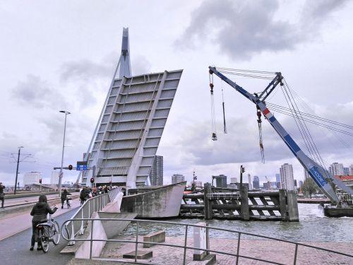 bridge rotterdam mesh