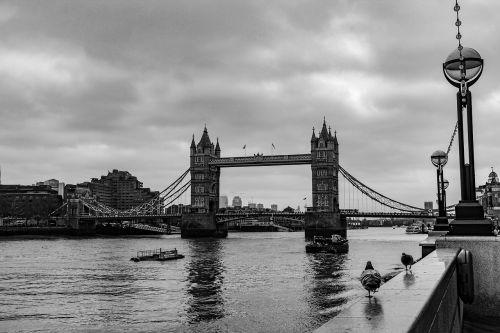 bridge waters suspension bridge