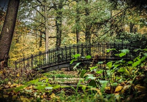 bridge  park  romantic